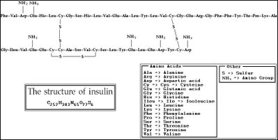 The primary structure of insulin i.e. amino acid sequence