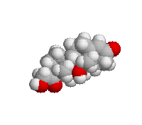 Hydrocortisone spacefill