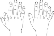 Drawing of a hand with one more thumb or finger than usual.
